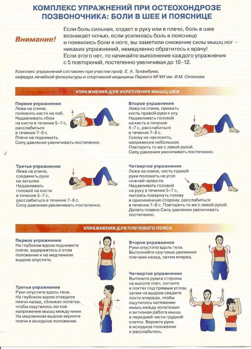 Эффективные упражнения для поясницы в домашних условиях