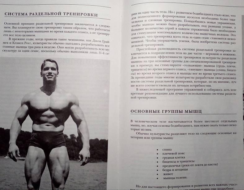 Комплекс упражнений от арнольда шварценеггера