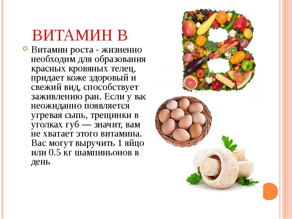 Витамины группы в — в чем содержатся, их виды и полезные свойства