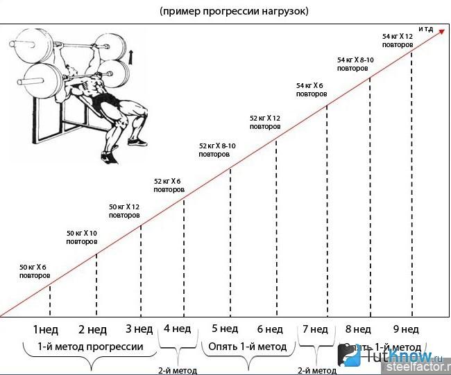 Циклирование нагрузок в бодибилдинге как залог успеха во всём