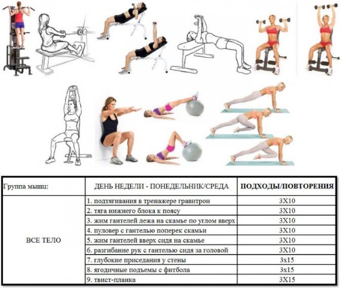 Упражнения в зале для девушек: комплексы упражнений для рук, спины, пресса, ног и программа для похудения