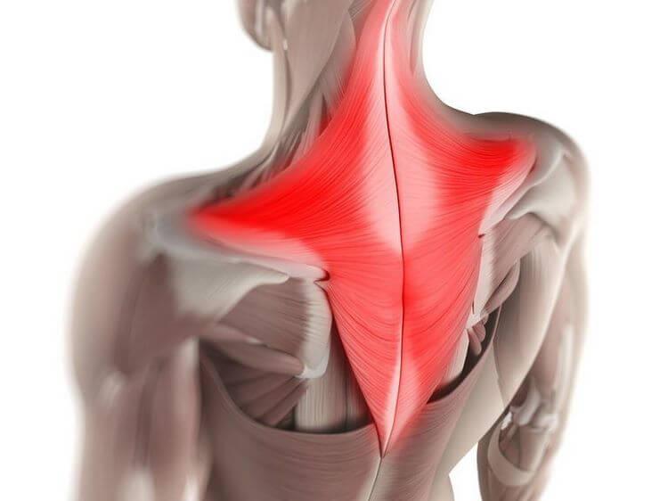 Как расслаблять мышцы спины (снимать спазмирование) | позвоночник.org