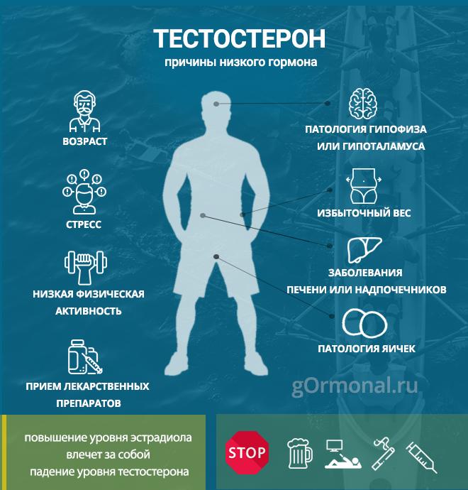 Лечение низкого тестостерона у мужчин: как лечить низкий уровень гормона, какие факторы делают его пониженным и какую выбрать тактику лечения нехватки тестостерона, а также, что делать при недостатке гормона, если есть другие болезни?
