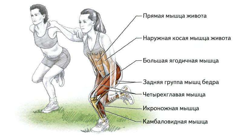 Запрыгивание на тумбу – лучшее упражнение для тренировки взрывной силы ног