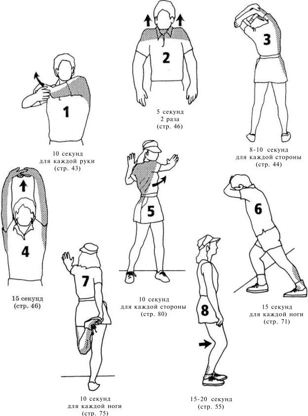 Разминка перед бегом — sportfito — сайт о спорте и здоровом образе жизни