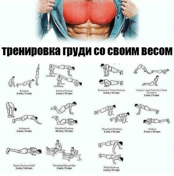 Как эффективно накачать грудь?