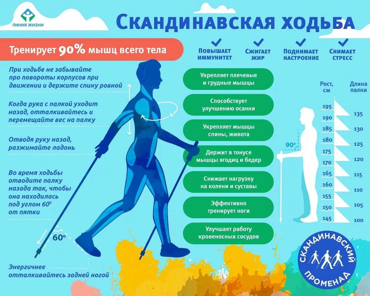 Сколько нужно в день ходить пешком