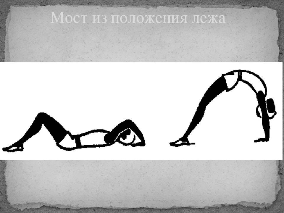 """❶ гимнастическое упражнение """"мостик"""": как научиться делать дома :: justlady.ru - территория женских разговоров"""