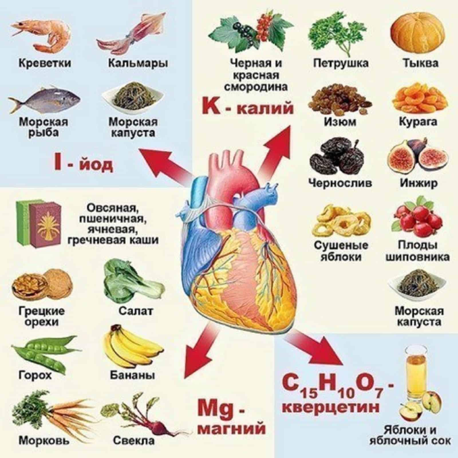 Продукты для сердца и сосудов: полезные и вредные | компетентно о здоровье на ilive