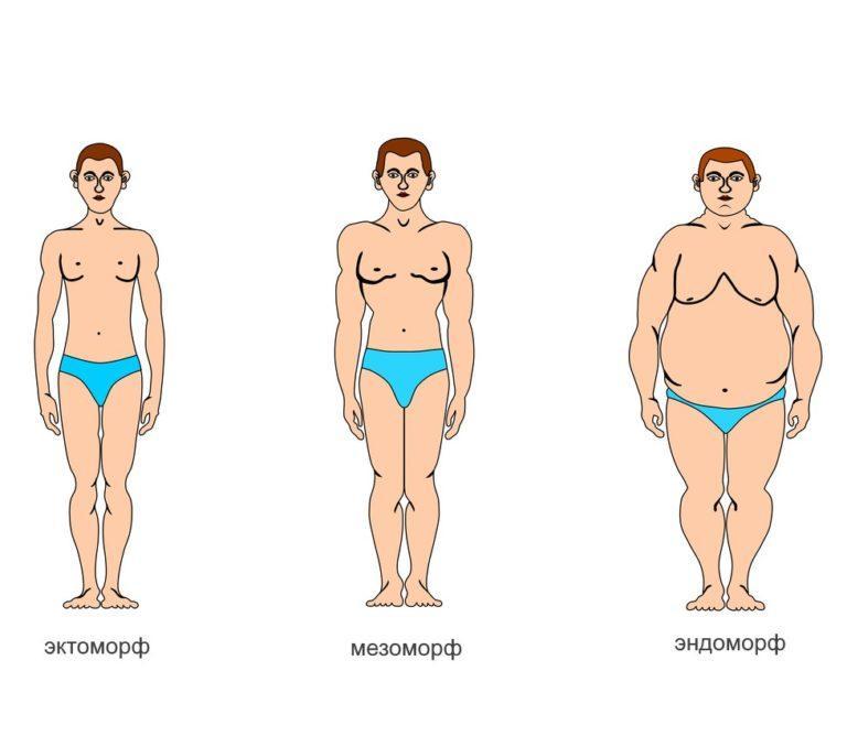 Как узнать свое телосложение