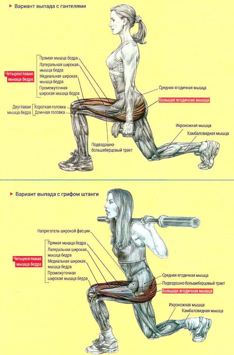 Как превратить жир в мышцы