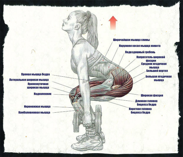 Как делать приседания плие и что дает это упражнение?