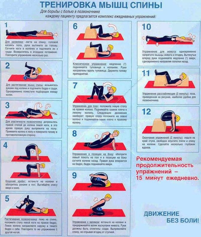 Упражнения для укрепления мышц поясничного отдела позвоночника