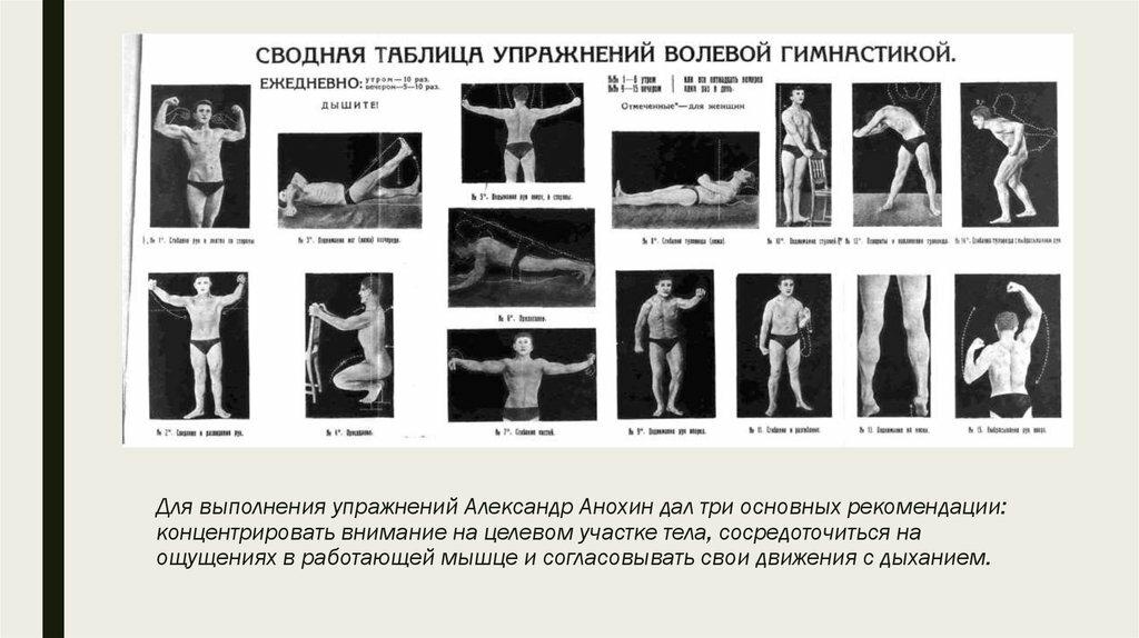Организация и методика проведения занятий по атлетизму