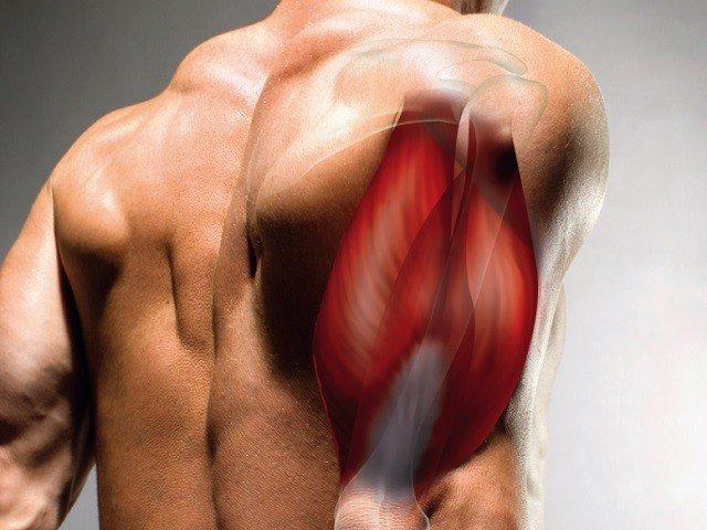 Напряжение в мышцах. мышечное напряжение и мышечные зажимы при неврозе
