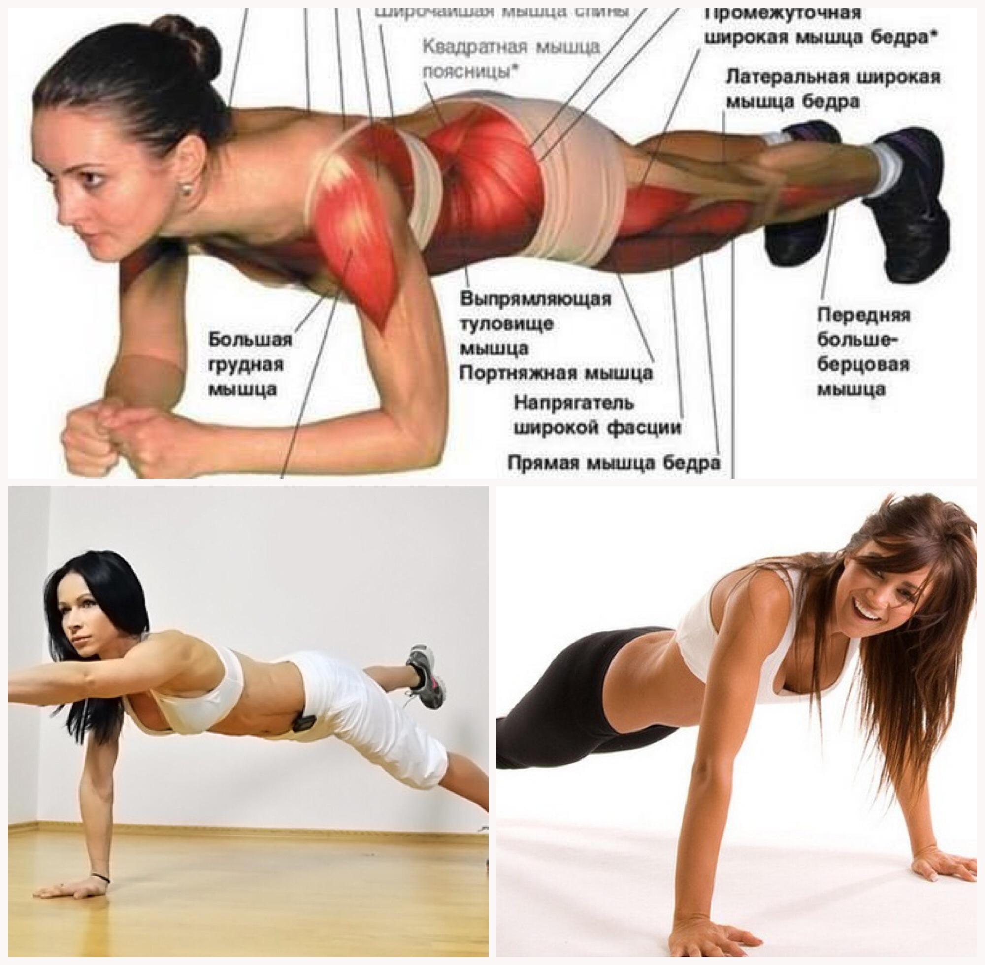 Что дает упражнение планка: зачем ее делать, есть ли эффективность, какие мышцы задействованы?