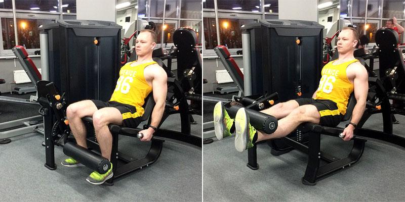 Упражнения на квадрицепс бедра: в тренажерном зале