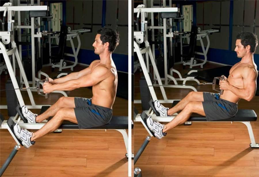 Тяга вертикального блока к груди: базовое упражнение для мышц спины
