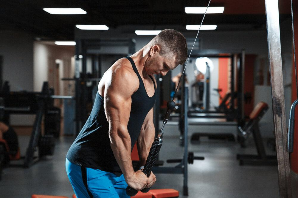 10 лучших упражнений на трицепс в тренажерном зале