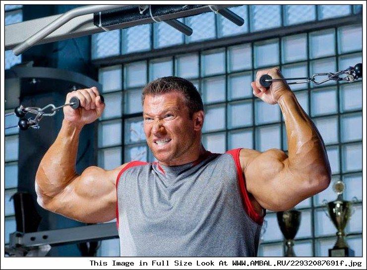 Гюнтер шлиеркамп, биография, рост и вес, программа тренировок