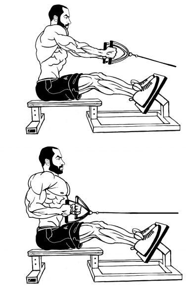 Рекомендации по освоению тяги горизонтального блока к животу и груди