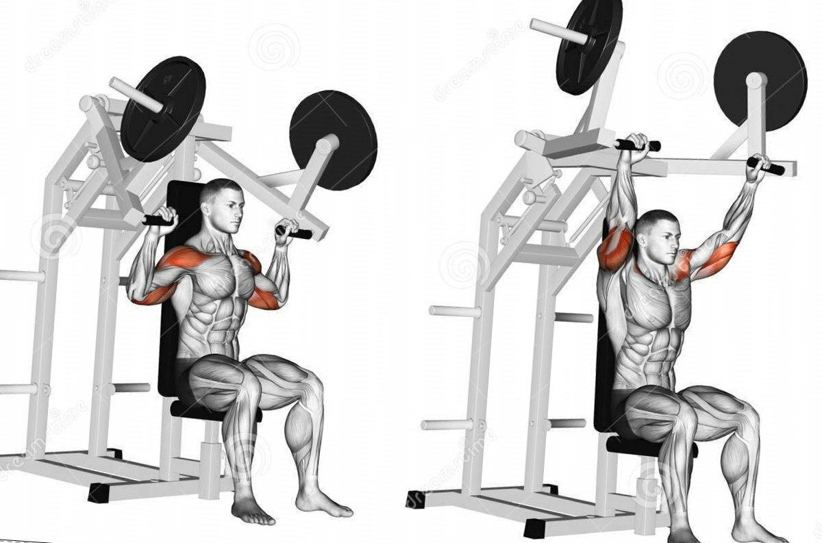 Жим в тренажере вверх сидя: какие мышцы работают, техника выполнения - tony.ru