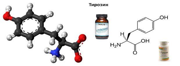 Для чего нужен тирозин?