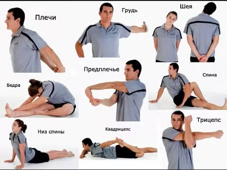 Разминка перед тренировкой в тренажерном зале: упражнения для разминки мышц