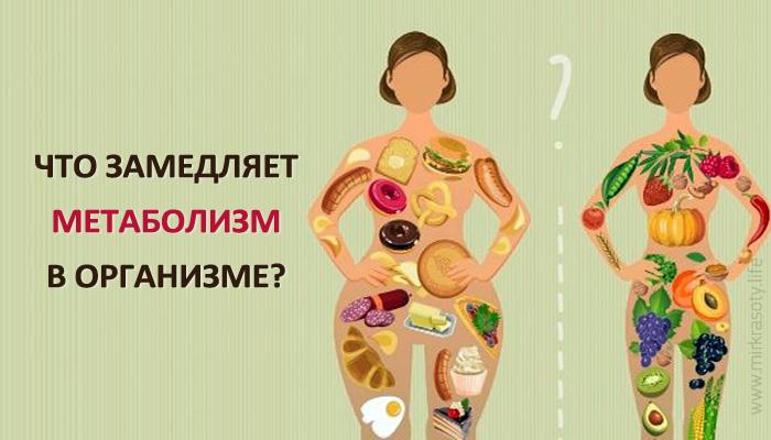 Как ускорить обмен веществ - 30 способов и продуктов, ускоряющих метаболизм
