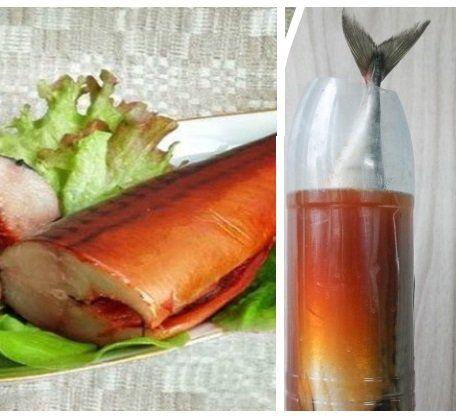 Скумбрия в бутылке - рецепт настоящего деликатеса из простой рыбы