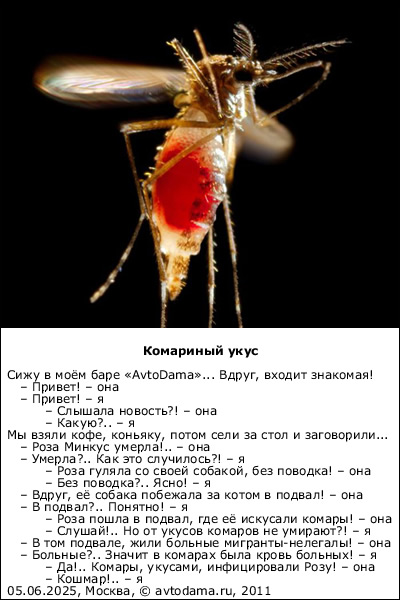 Кто тут самый вкусный? людей с какой группой крови комары  любят  больше