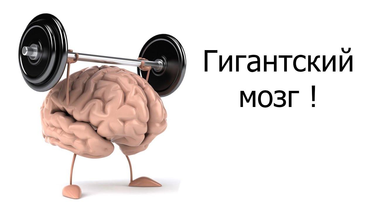 Как с помощью тренировок помочь мозгу стать креативнее, думать быстрее и перестать нервничать | саморазвитие | наша психология