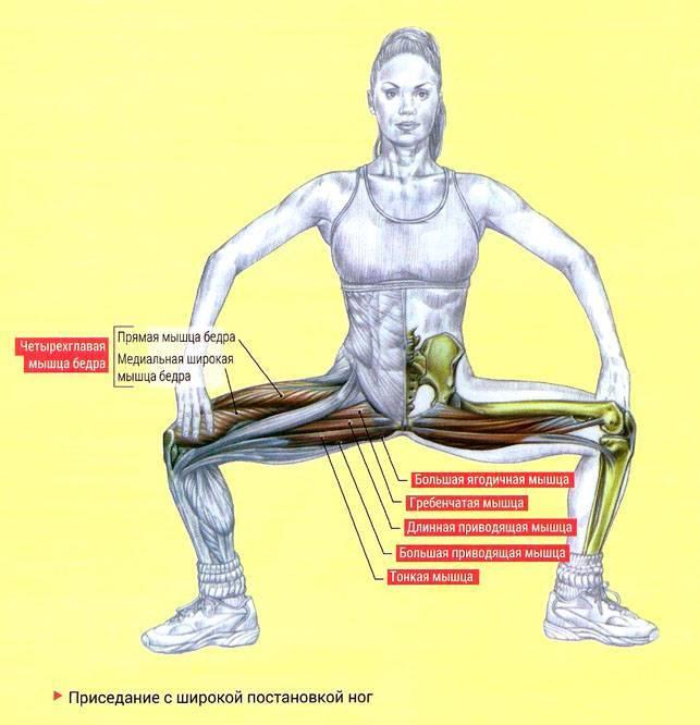Приседания на одной ноге: достоинства и недостатки, особенности выполнения, техника подводящих упражнений