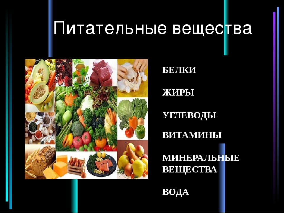 Правильное питание: топ-10 золотых принципов для здоровья