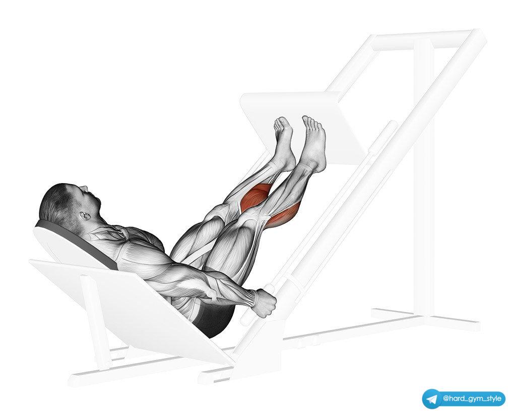 Жим ногами в тренажёре: техника выполнения и рекомендации