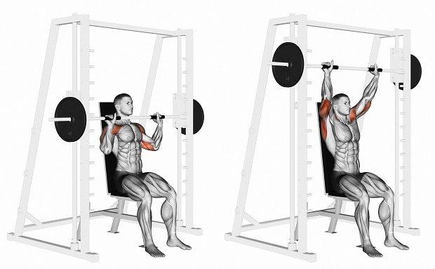 Жим штанги из-за головы сидя или стоя: какие мышцы работают, техника выполнения