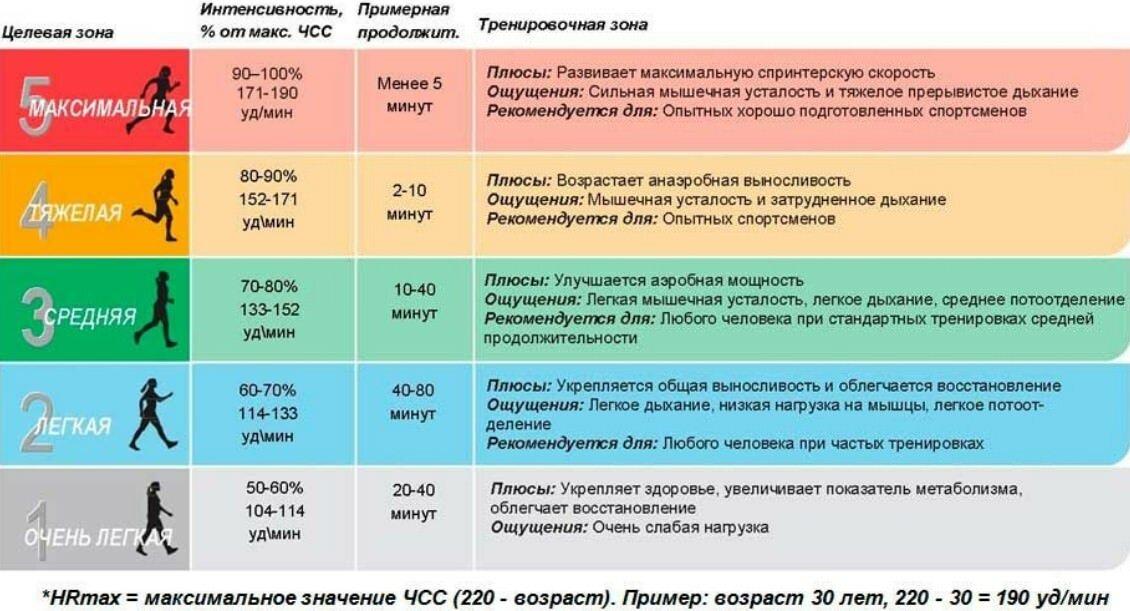 Кардиотренировки: для чего нужны, с чего начинать и как проводить - спорт и здоровый образ жизни - культура, спорт, отдых - жизнь в москве - молнет.ru