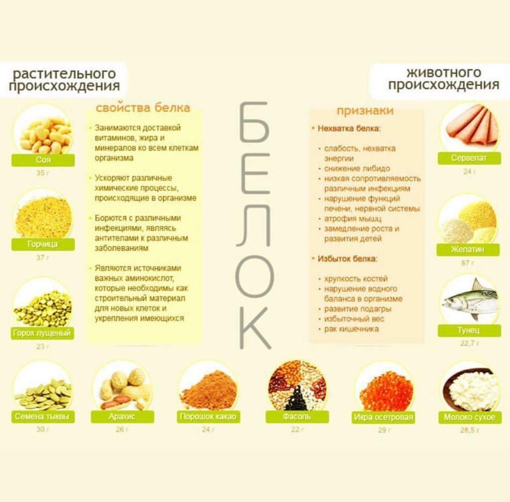Белки, жиры, углеводы в продуктах питания - таблица содержания на 100 граммов