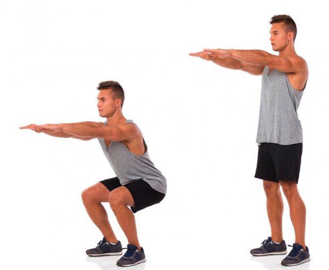 Какие группы мышц работают при приседаниях