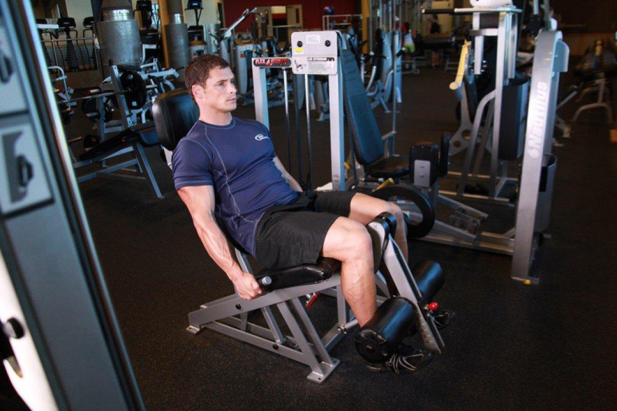 4 х главая мышца бедра упражнения. как накачать мышцы бедра? упражнения для квадрицепсов