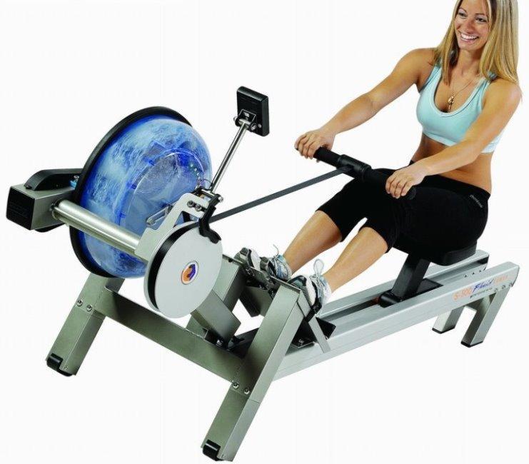 Какие мышцы работают на гребном тренажере?