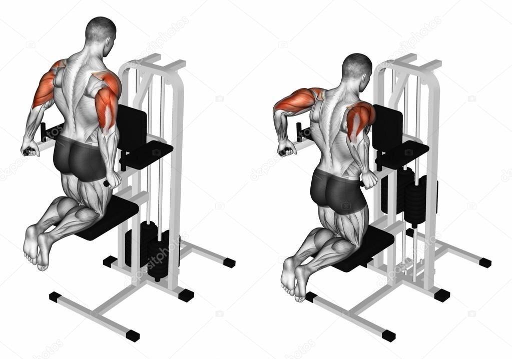 Отжимания в стойке на руках: польза, какие мышцы работают и техника выполнения