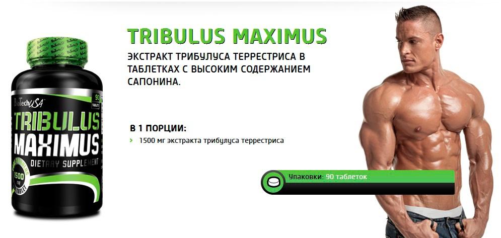 Через сколько начинает действовать трибулус. «трибулус»: как принимать и в какой дозировке? что это такое.