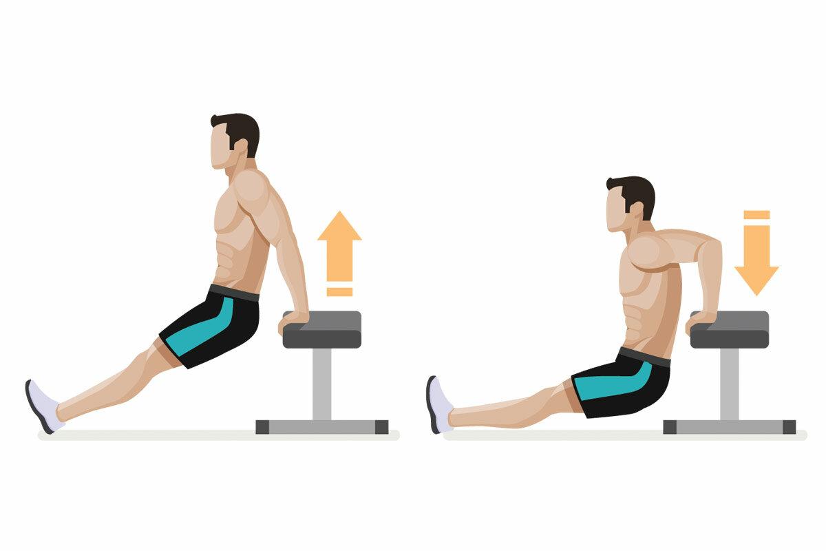 Мышцы: как накачать без вреда здоровью. 4 совета подросткам. силовая тренировка для мальчика