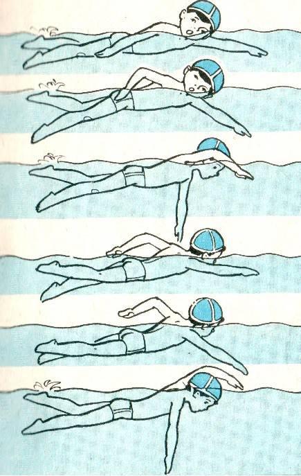 Как научиться плавать на спине: самостоятельно осваиваем кроль с помощью упражнений и видео уроков