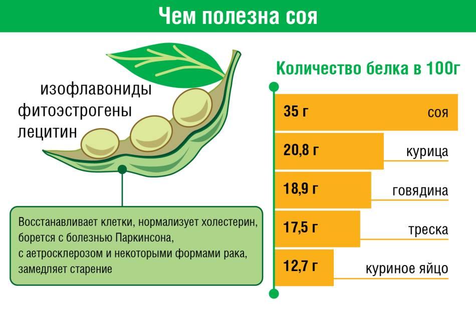 Соя: вред и польза (часть 1). научные исследования | promusculus.ru