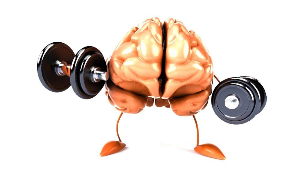 Мышечная память: что это такое и как она помогает нам оставаться в форме — fertime.ru