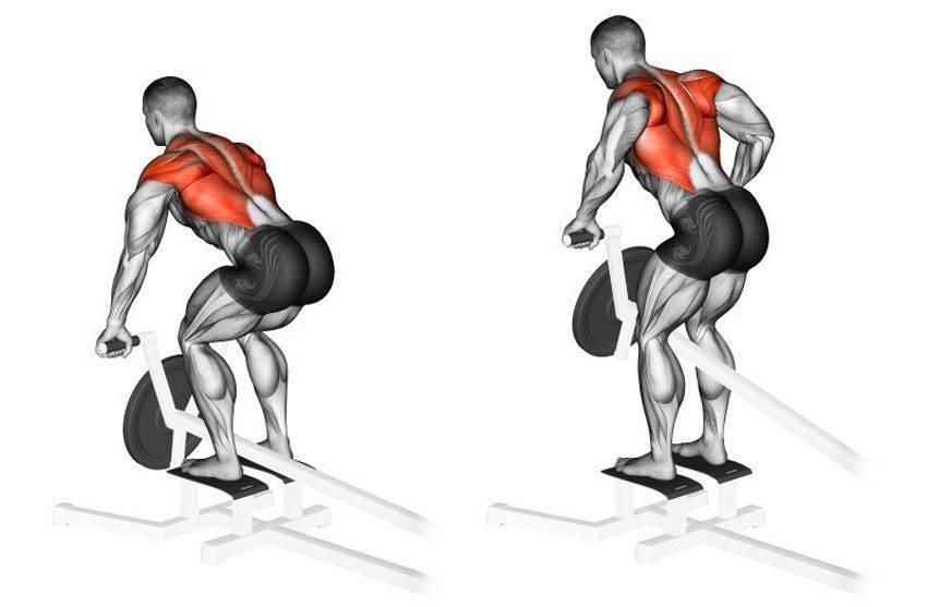 Тяга штанги в наклоне — базовое упражнение для создания широкой спины