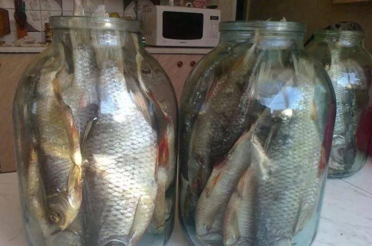 Как посолить рыбу в рассоле в домашних условиях вкусно