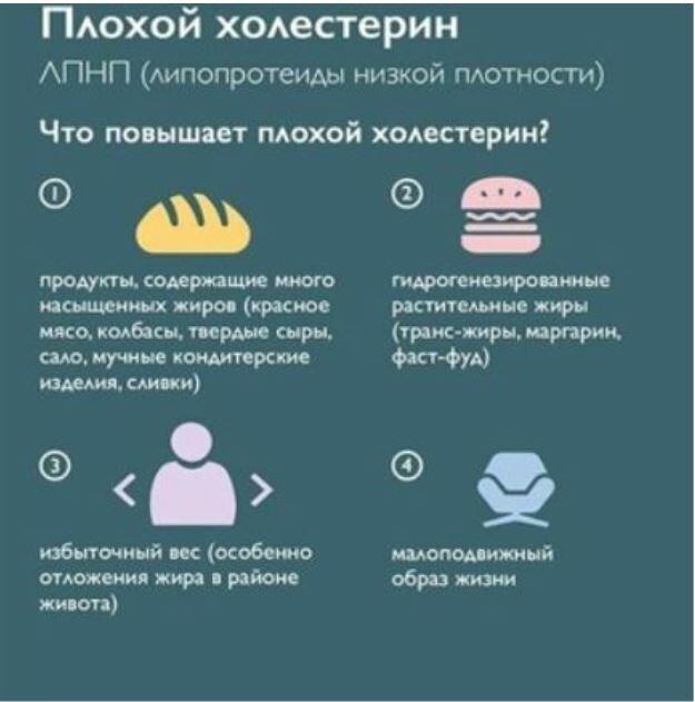 Продукты повышающие холестерин: полная таблица содержания вредного вещества в пище, какие блюда нельзя есть при высоком показателе общего хс в крови и атеросклерозе